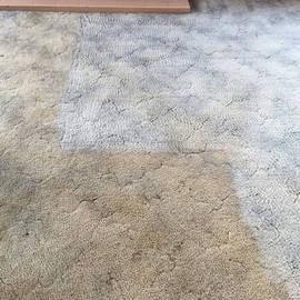 Clean Carpet 3